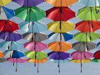 Maryland umbrellas